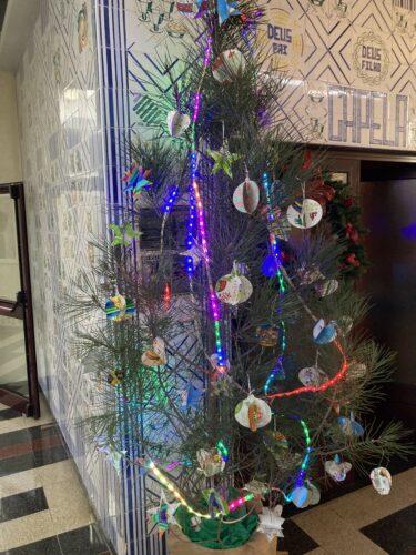 Os enfeites foram colocados no pinheiro de Natal adquirido pela escola